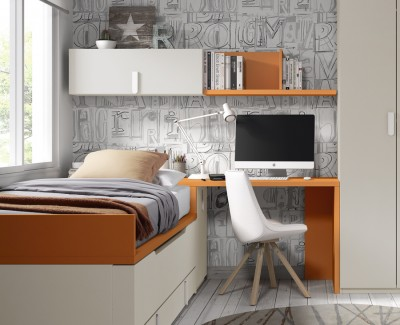 Desk with shelves and side trunk