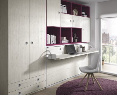 Children's bedroom comprised of wall bed, wardrobe and shelves