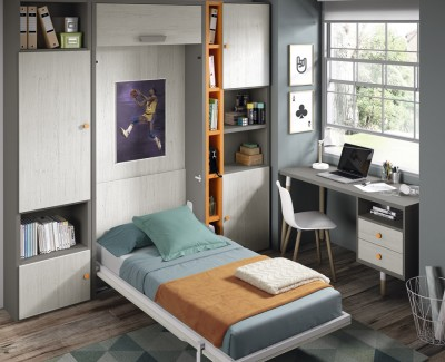 Bedroom comprised of wall bed, desk and shelves